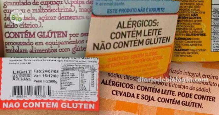 O que é glúten contem gluten não contém gluten