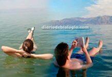 Mar Morto: Como é possível as pessoas flutuarem na água