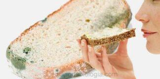 Pão mofado: Se tirar a parte com mofo, pode comer? Faz mal?