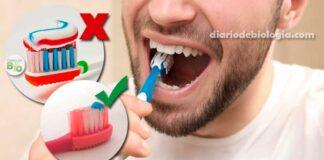 Como escovar os dentes? Veja 10 erros que todos cometem