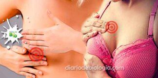 Seios doloridos: Por que sinto dor nos seios antes da menstruação?
