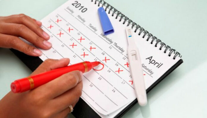 Como calcular o período fértil? Veja quais dias você pode engravidar