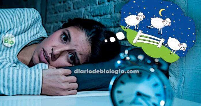 Como dormir rápido: médico ensina técnica que detona a insônia