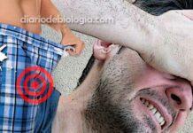 testículo dolorido após ereção prolongada