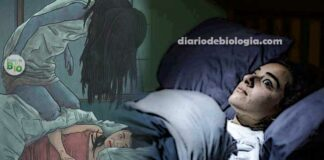 Paralisia do sono: veja porque esse fênomeno acontece