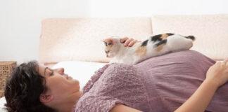 Toxoplasmose na gravidez: