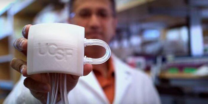 cientistas-criam-rim-artificial