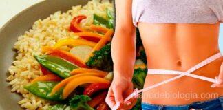 Dieta vegetariana emagrece duas vezes mais do que a dieta carnívora, diz estudo