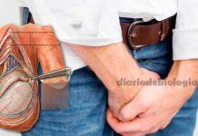 Dor nos testículos: a dor no saco pode ser doença