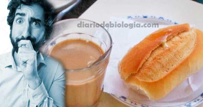Não tomar café da manhã, faz mal? Um texto para quem não consegue comer de manhã