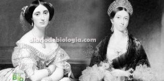 No século 19 o sonho de beleza das mulheres era se parecerem com um tuberculoso