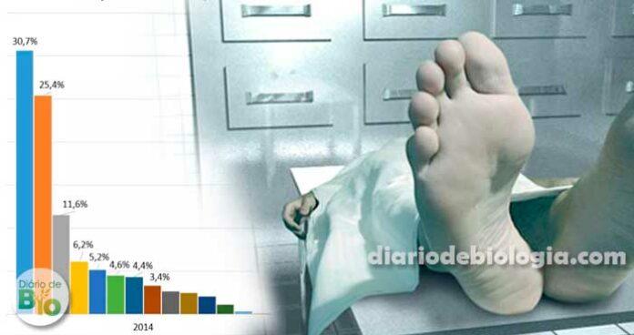 Essas são as 10 principais causas de morte dos brasileiros