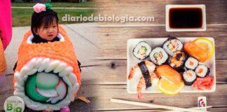 Peixe cru, molho shoyu, yakissoba: criança pode comer comida japonesa?