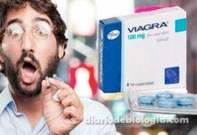 """Fumaça da fábrica do Viagra está deixando homens e cães da região """"superestimulados"""""""