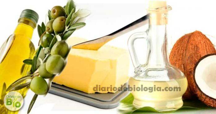 Estudo revela qual a melhor opção entre a manteiga, o óleo de coco e o azeite