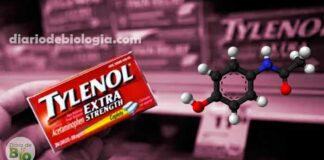 5 coisas que você precisa saber sobre o uso do Paracetamol, urgente!