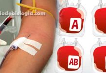 O que seu tipo sanguíneo tem a dizer sobre sua saúde