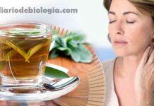 Chá para menopausa: médico ensina chá natural que alivia os sintomas