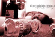 Coma alcoólico: saiba como reconhecer e o que fazer nesses casos
