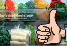 Como congelar legumes e verduras para não perder os nutrientes, a cor e o sabor