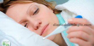 Como baixar a febre em casa? Médica explica o que fazer