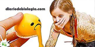 vomito amarelado