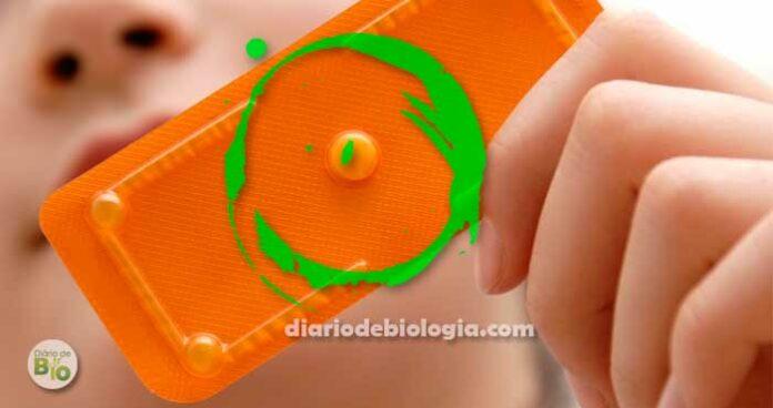 Como saber se a pílula do dia seguinte funcionou? Haverá sangramento?
