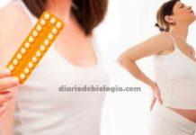 Anticoncepcional e gravidez: Faz mal grávida tomar anticoncepcional
