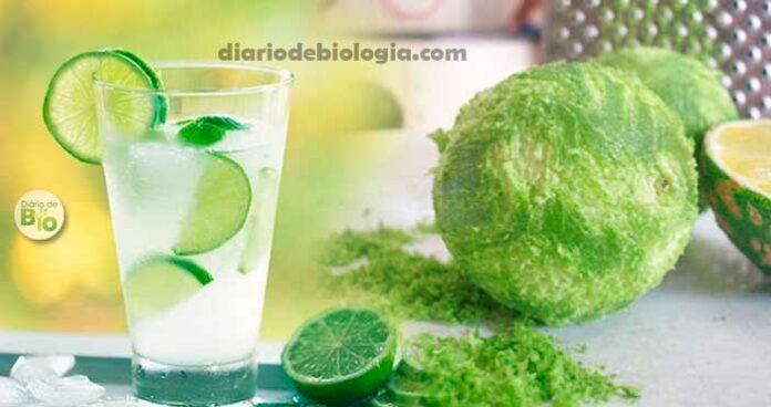 Água com limão em jejum para emagrecer: como preparar? Nutricionista ensina