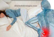 Dor na coluna lombar: qual a melhor posição para dormir?