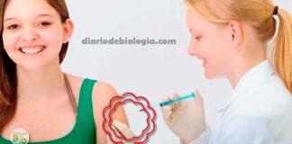anticoncepcional injetável Como funciona? Engorda? Menstrua?