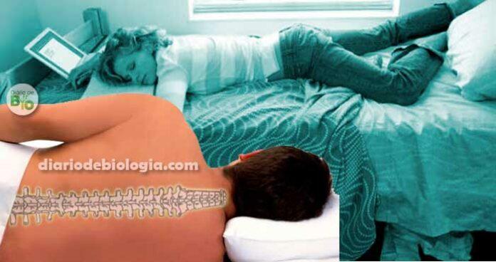 Dor na coluna: ortopedistas ensinam melhor posição para dormir
