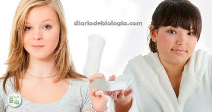 Menarca: Como saber se a primeira menstruação está próxima