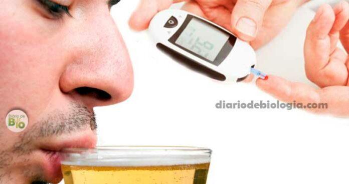 Cerveja e Diabetes: Quem tem Diabetes pode tomar cerveja?