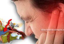 Como tirar água do ouvido: Qual o procedimento correto a fazer?