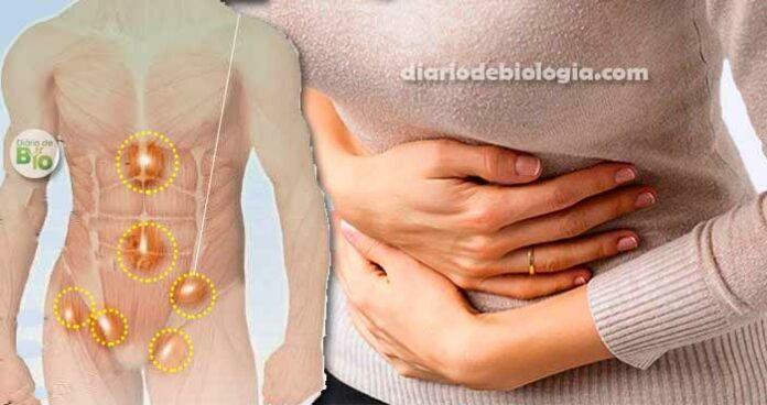 Como saber se tenho hérnia? Conheça tipos, causas e sintomas