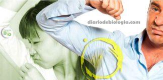 Como tirar cecê da roupa e como evitar que ele se acumule?
