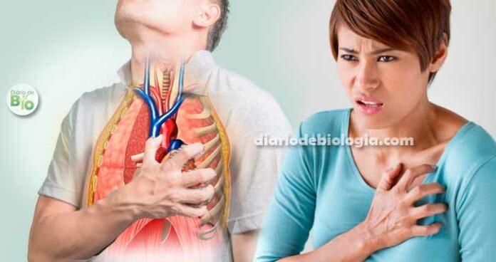 Coração acelerado, taquicardia e falta de ar: O que pode ser?