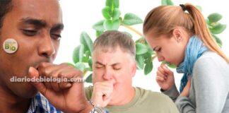 Como acabar com a tosse? Estudo mostra melhor remédio caseiro