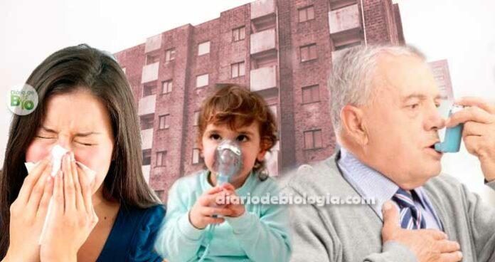 Síndrome do Edifício Doente: o prédio que você mora te deixa doente?