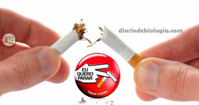 Como parar de fumar: melhor guia para largar o cigarro definitivamente