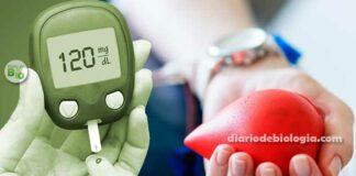 Quem tem diabetes pode doar sangue? Tire essa dúvida agora