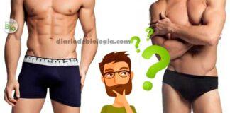 O que é melhor: usar cueca comum ou cueca boxer? A ciência responde!