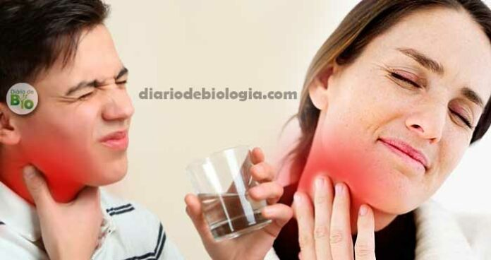 Remédio para dor de garganta: Melhores alívios para garganta inflamada