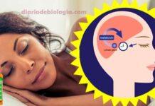 Hormônio do sono melatonina, para que serve Como tomar melatonina ciclo circadiano