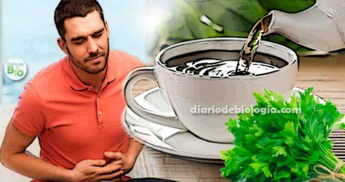 Chá para infecção urinária homem com dor na barriga