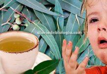 Chá para tosse de todo tipo, comprovado cientificamente!