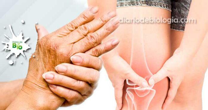 Dor nas juntas: Doenças que causam dores nas articulações