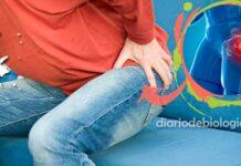 Dor no quadril: quais as causas mais comuns? Quando devo ir ao médico?