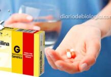 Para que serve Amoxicilina? Por que é usada? Quem não deve tomar? Quais efeitos colaterais?